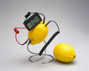 Fruit-powered clock, 1998.